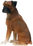 Dog Breed Statues Boxer Dog Figurine Statue - Small