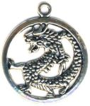 Encircled Celtic Dragon Celtic Jewelry Pendant