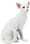 Oriental Short Hair Cat Figurine Statue